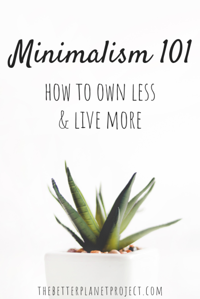 Minimalism 101_ How to Own Less & Live More-2